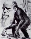 Darwin_2