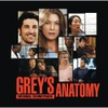 Greys_anatomy_1