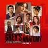 Greys_anatomy_2